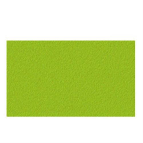 ターナー AGジャパネスクカラー20ml 343若草色