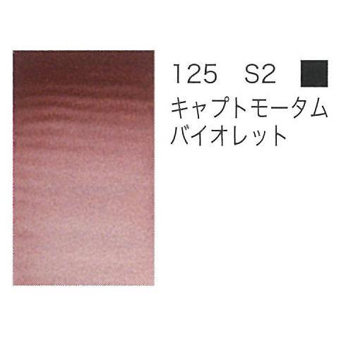W&N プロフェッショナル水彩2号(5ml) 125キャプトモータムバイオレット