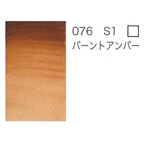 W&N プロフェッショナル水彩2号(5ml) 076バーントアンバー
