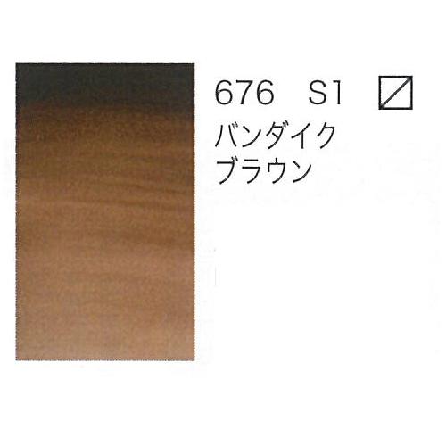 W&N プロフェッショナル水彩2号(5ml) 676バンダイクブラウン