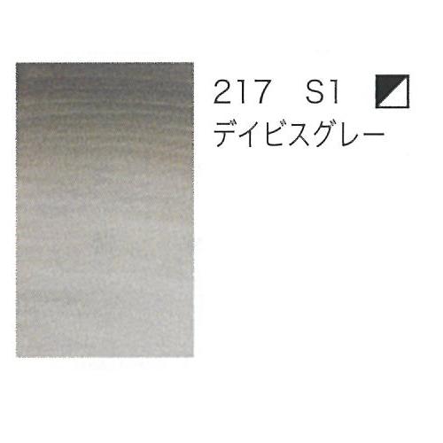 W&N プロフェッショナル水彩2号(5ml) 217デイビスグレー