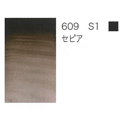 W&N プロフェッショナル水彩ハーフパン 609セピア
