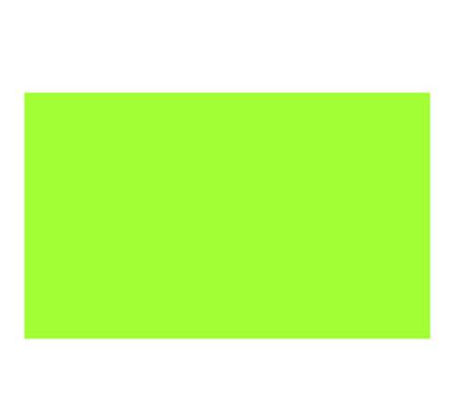 ニッカー デザイナースカラー20ml 555 メイグリーン