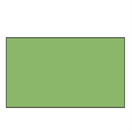ラウニー ソフトパステル 357-3 リザートグリーン