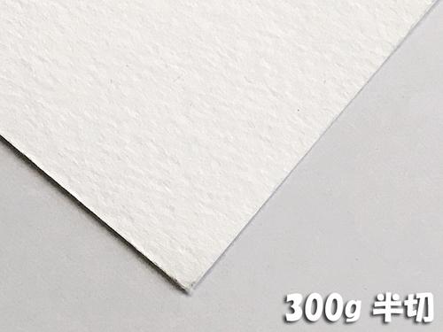 ホワイトワトソン水彩紙(超特厚口・300g)4/6判半切:10枚