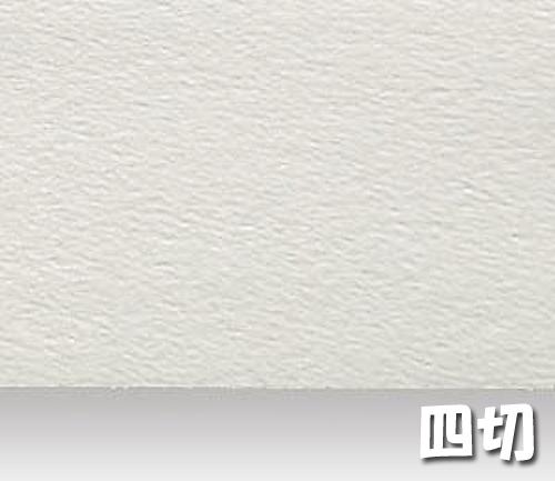 シリウス水彩画紙(特厚口・220g)B本判四切:20枚