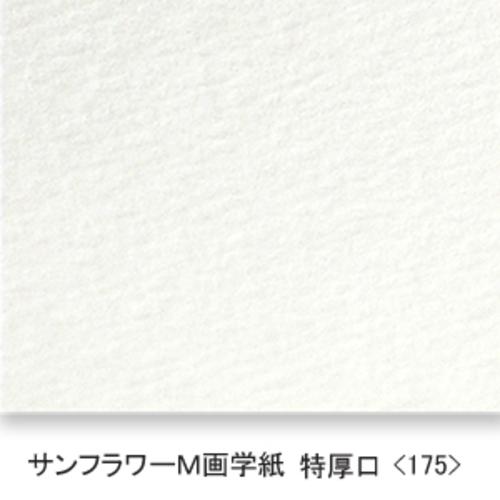 サンフラワーM画学紙(特厚口・175K)B本判四切:20枚