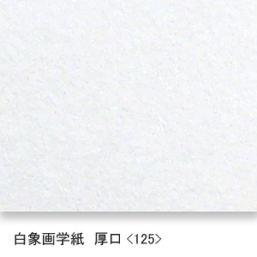 白象画学紙(厚口・125K)B本判四切:20枚