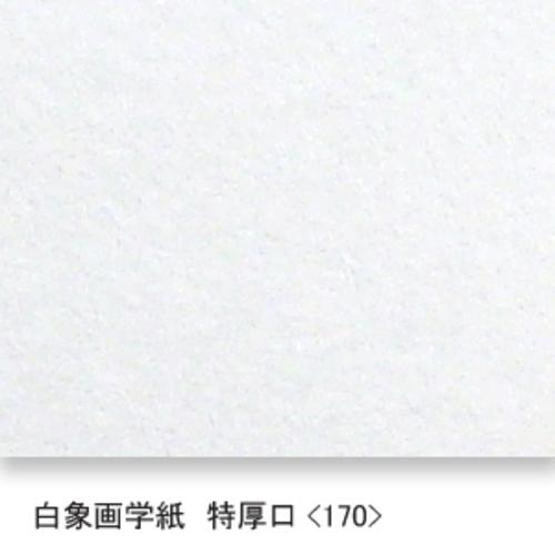 白象画学紙(特厚口・170K)B本判四切:20枚