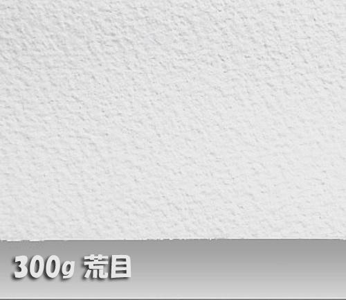ウォーターフォードホワイト水彩紙300g【荒目】中判:10枚