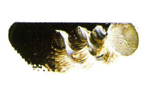 マツダ スーパー油絵具9号(40ml) 1604 ローアンバー