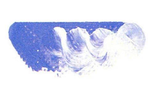マツダ スーパー油絵具6号(20ml) 1801 バイオレットグレー