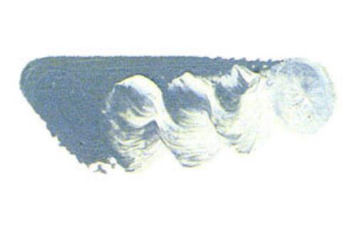 マツダ スーパー油絵具6号(20ml) 1807 グレーオブグレー