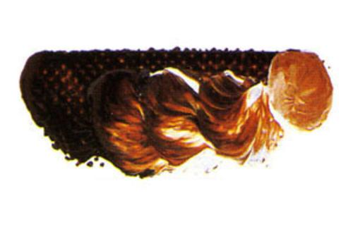 マツダ スーパー油絵具9号(40ml) 1609 トランスオキサイドレッド