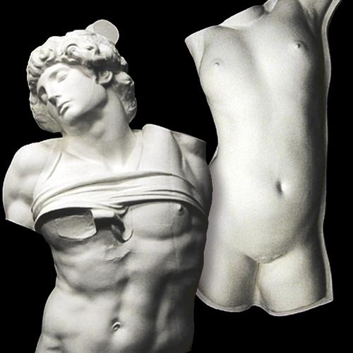 石膏像 半身像・トルソ