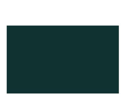 【削除】ニッカ― ポスターカラー 40ml  37 クロームグリーン(3)