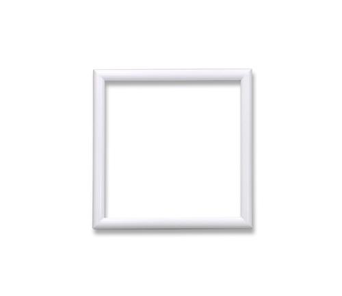 D型フレーム<ホワイト> 12角