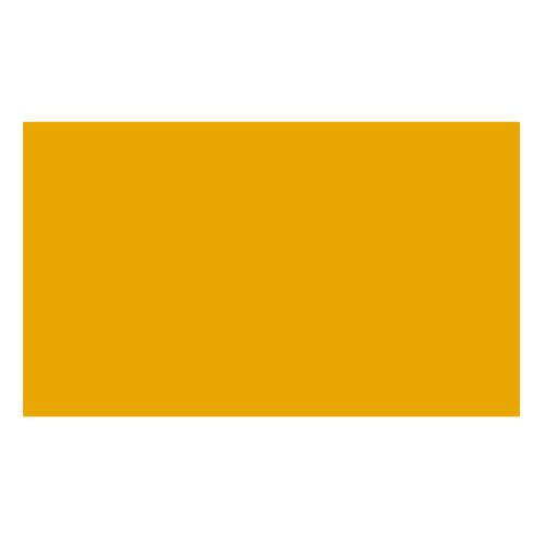 ターレンス エコラインブラッシュペン 237 ディープオレンジ