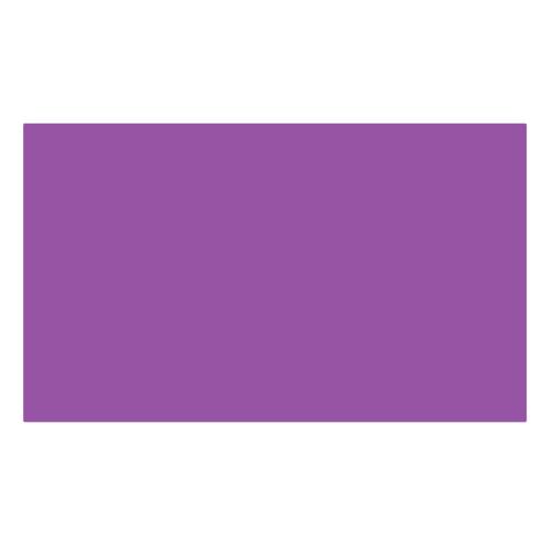 ターレンス エコラインブラッシュペン 545 レッドバイオレット