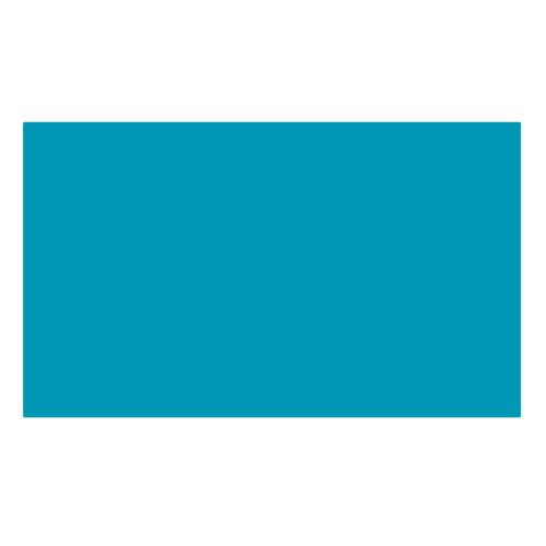 ターレンス エコラインブラッシュペン 640 ブルーイッシュグリーン