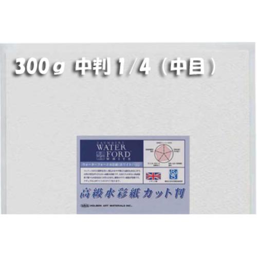 ウォーターフォードホワイト水彩紙300g【中目】中判1/4パック(2枚入)