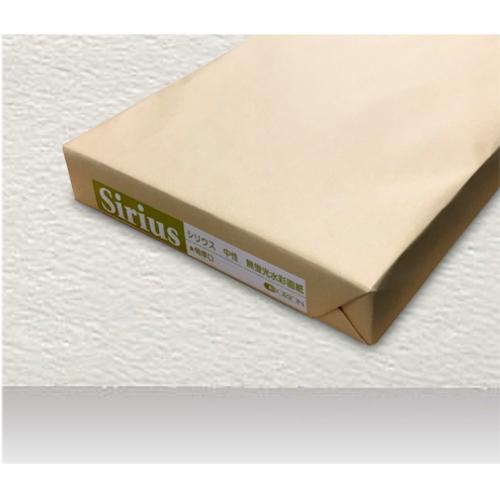 シリウス水彩画紙(特厚口・220g)A4[100枚包]