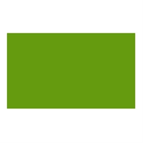 ホルベイン カラージェッソ300ml ライトグリーン(A657)