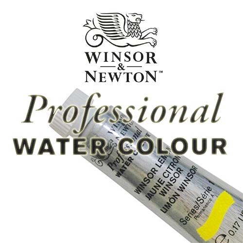 ウィンザー&ニュートン プロフェッショナル水彩 2号(5ml)