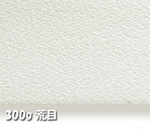 アルシュ水彩紙 300g【荒目】中判:10枚