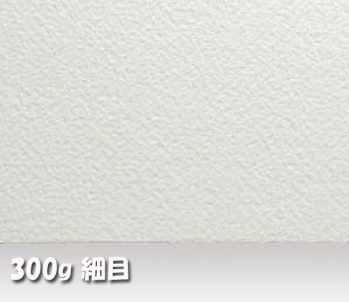 アルシュ水彩紙 300g【細目】中判:10枚