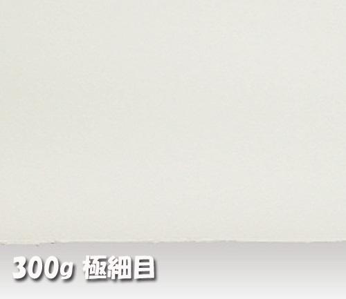 アルシュ水彩紙 300g【極細目】中判:10枚