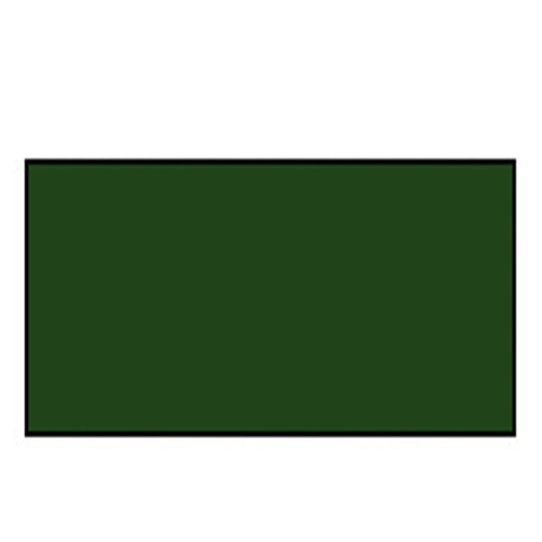W&N アーチスト油絵具 21ml 599サップグリーン