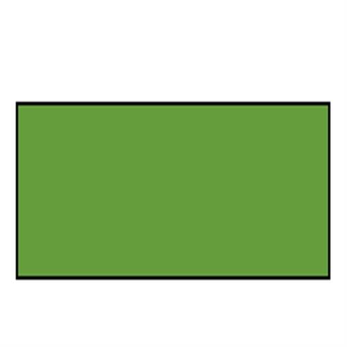 W&N ウィントン油絵具200ml 599サップグリーン(37)