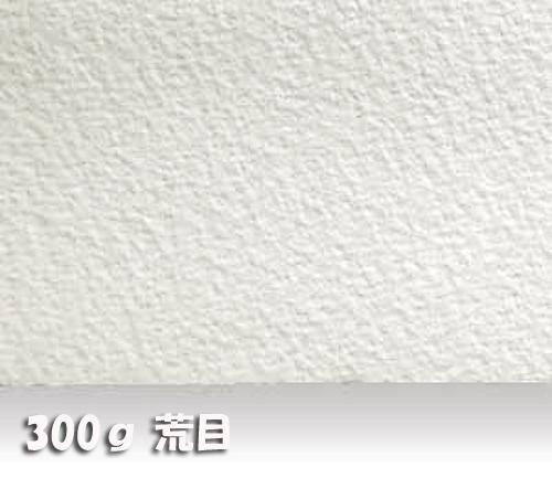 ウォーターフォードナチュラル水彩紙300g【荒目】中判:10枚