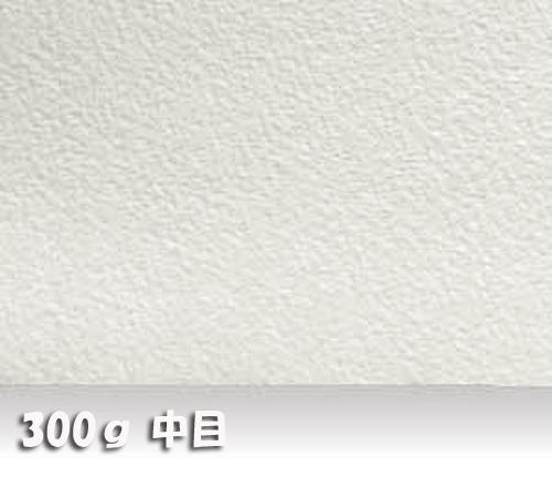 ウォーターフォードナチュラル水彩紙300g【中目】中判:10枚