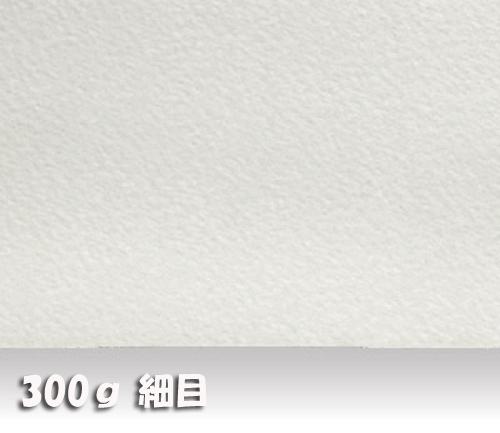 ウォーターフォードナチュラル水彩紙300g【細目】中判:10枚