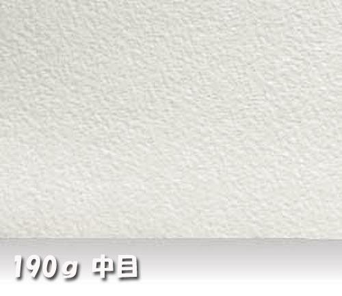 ウォーターフォードナチュラル水彩紙190g【中目】中判:10枚