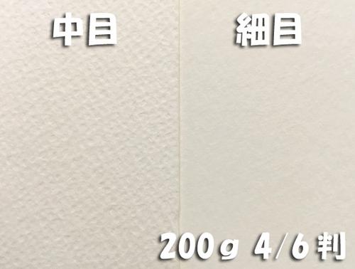 ワーグマン水彩紙(厚口・200g)4/6判:5枚