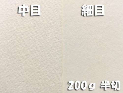 ワーグマン水彩紙(厚口・200g)4/6判半切:10枚
