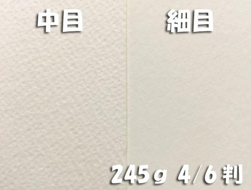 ワーグマン水彩紙(特厚口・245g)4/6判:5枚