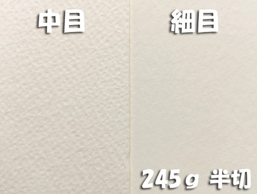 ワーグマン水彩紙(特厚口・245g)4/6判半切:10枚