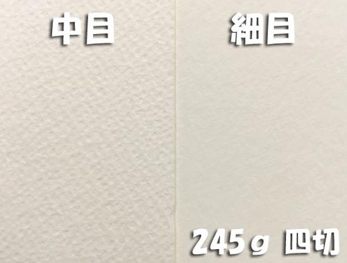 ワーグマン水彩紙(特厚口・245g)4/6判四切:20枚