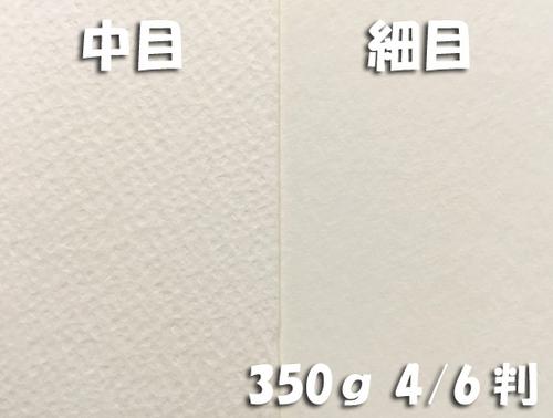 ワーグマン水彩紙(超厚口・350g)全判:5枚