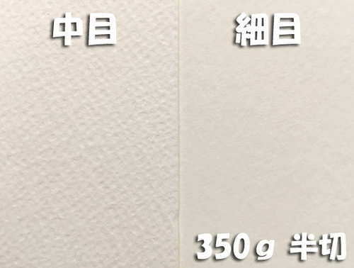 ワーグマン水彩紙(超厚口・350g)全判半切:10枚
