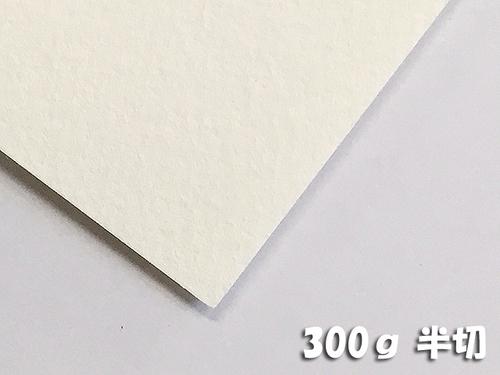ワトソン水彩紙(超特厚口・300g)4/6判半切:10枚