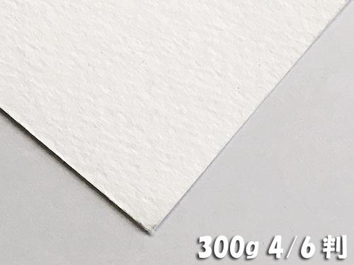 ホワイトワトソン水彩紙(超特厚口・300g)4/6判:5枚