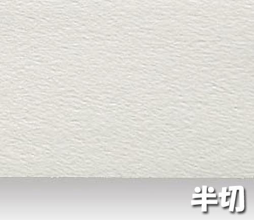 シリウス水彩画紙(特厚口・220g)B本判半切:10枚
