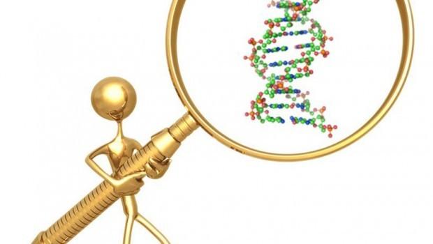 【沖縄:1月期】教員向け研修会:授業でできる、DNA鑑定!