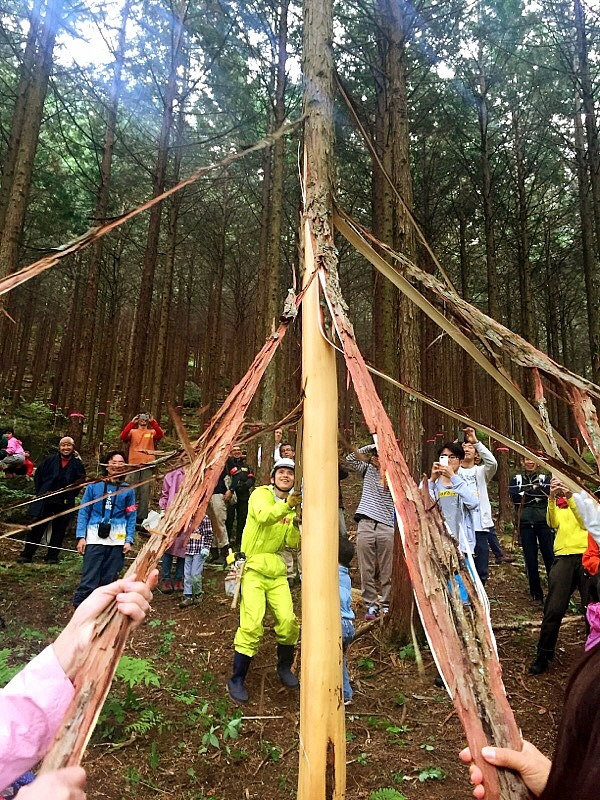 きらめ樹〜親子で500年後の日本の森を再生しませんか?