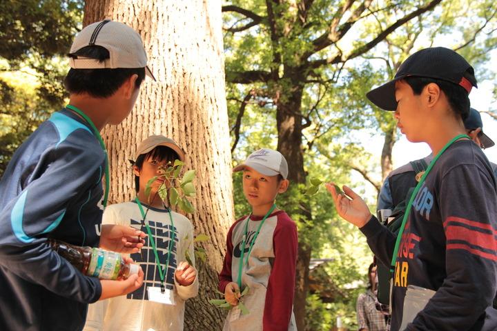 「森の学校・海の学校~アクティブ・ラーニングへの第一歩」出版記念セミナー
